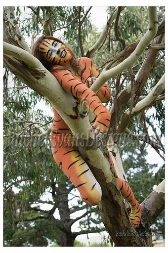 Body painting, an orange tiger in a tree, photograph by Eddy Teh