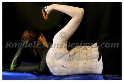 Body painting of a swan with black background, photo shoot done completely by me in Hamburg 2013